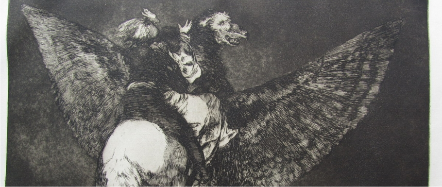 bibliofilia disparates goya